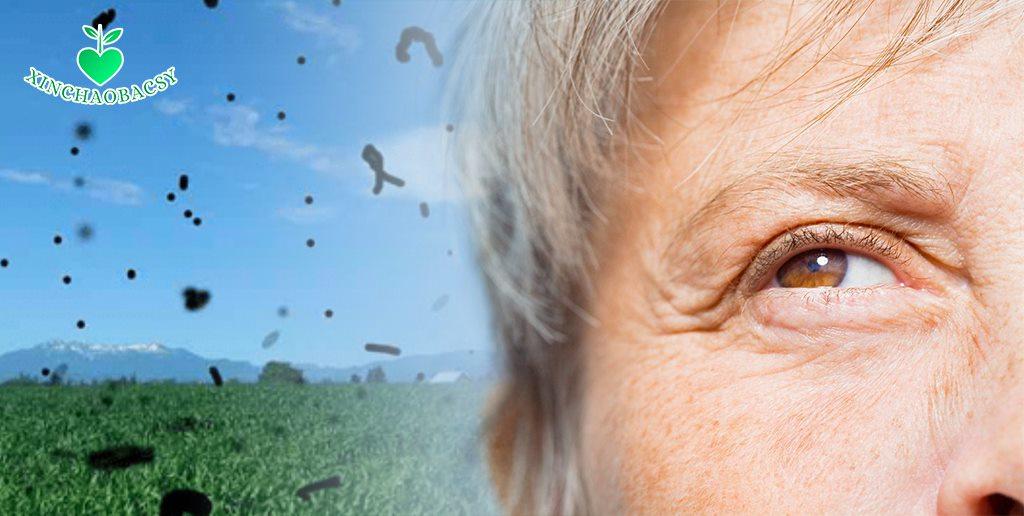 Mắt có hiện tượng ruồi bay – Cẩn trọng để tránh mù đột ngột