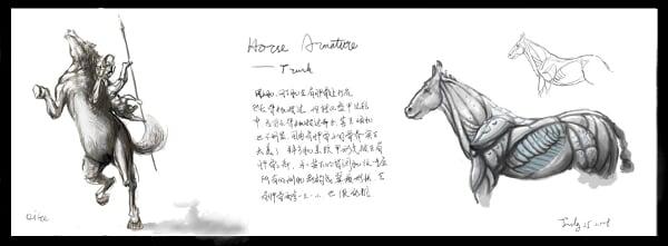 horse_torso armture design