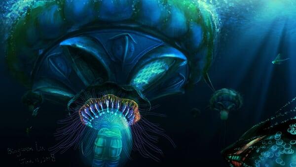 jellyfish-town-web
